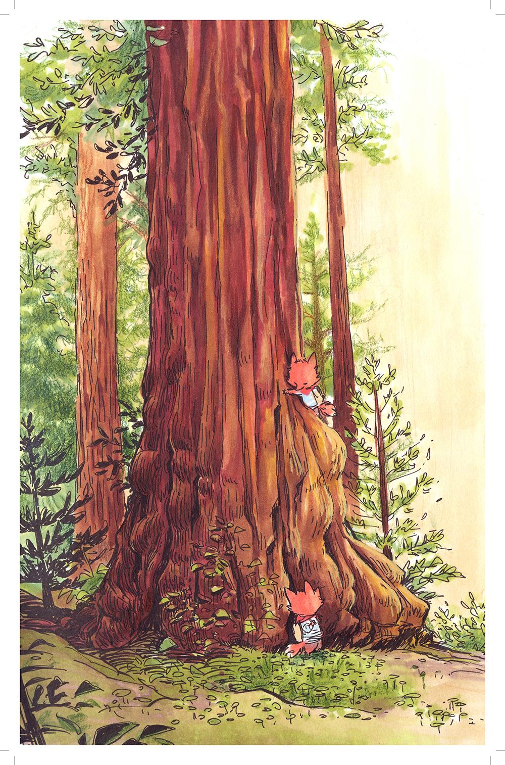 CLiao_redwoods_11x17.jpg