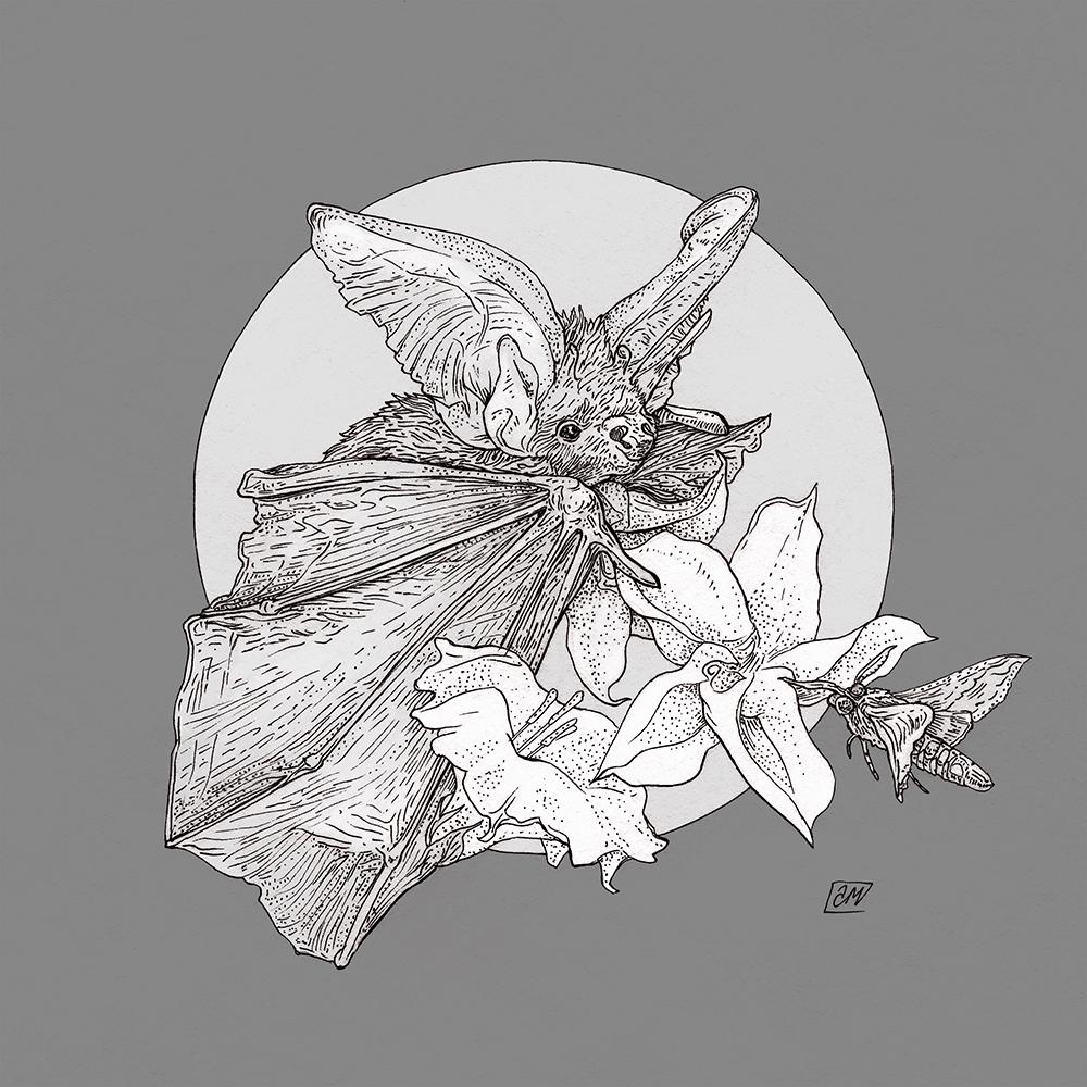 """Night Bloom"" by Asya Miskevich"