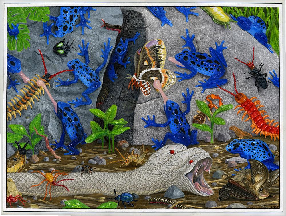 """Treefrog Infestation"" by Tim Furey"