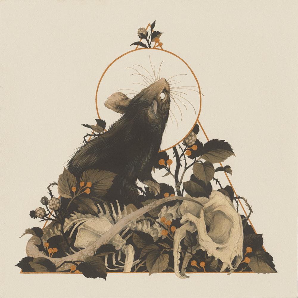 """""""Rattus Rattus"""" by Teagan White"""