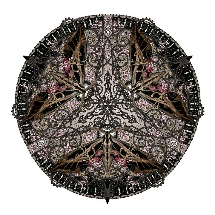 """Cherry blossom & Achemon Sphinx Moth"""
