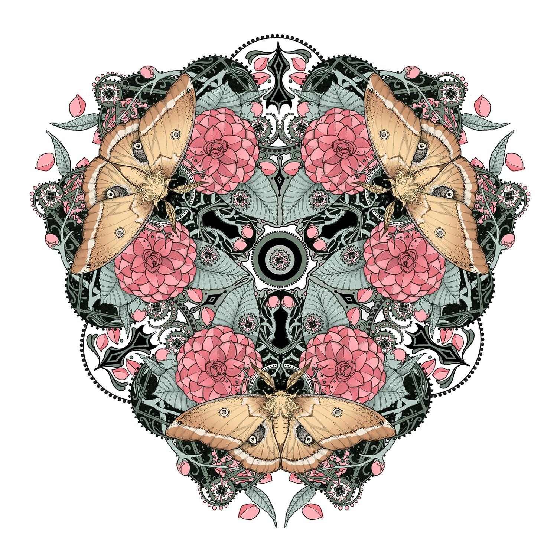 """Camellia & Polyphemus Moth"""