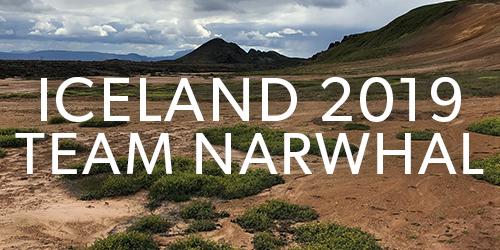 2019_team_narwhal.jpg