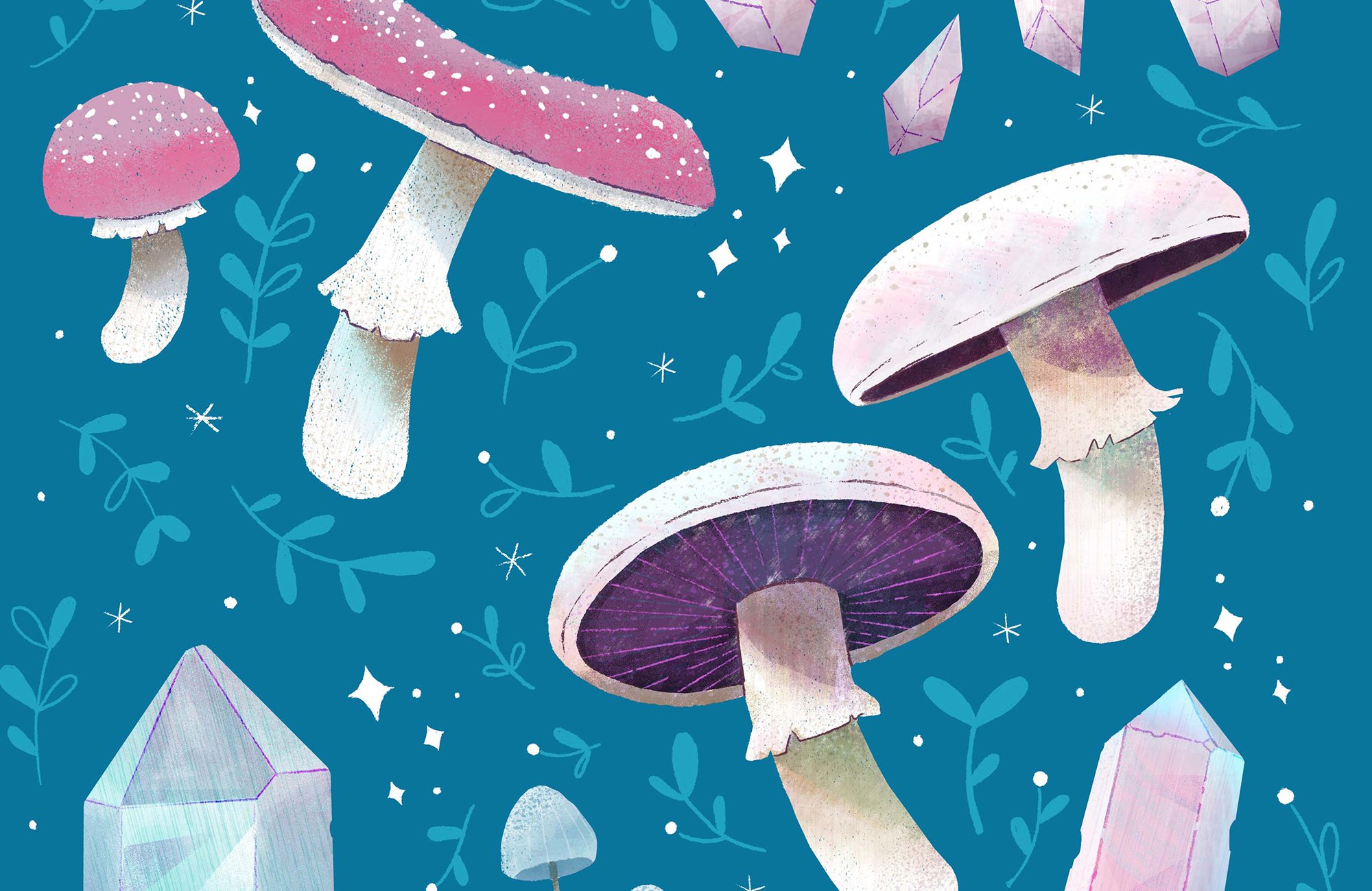 Robin_Sheldon_Mushroom_crystal_illustration.jpg