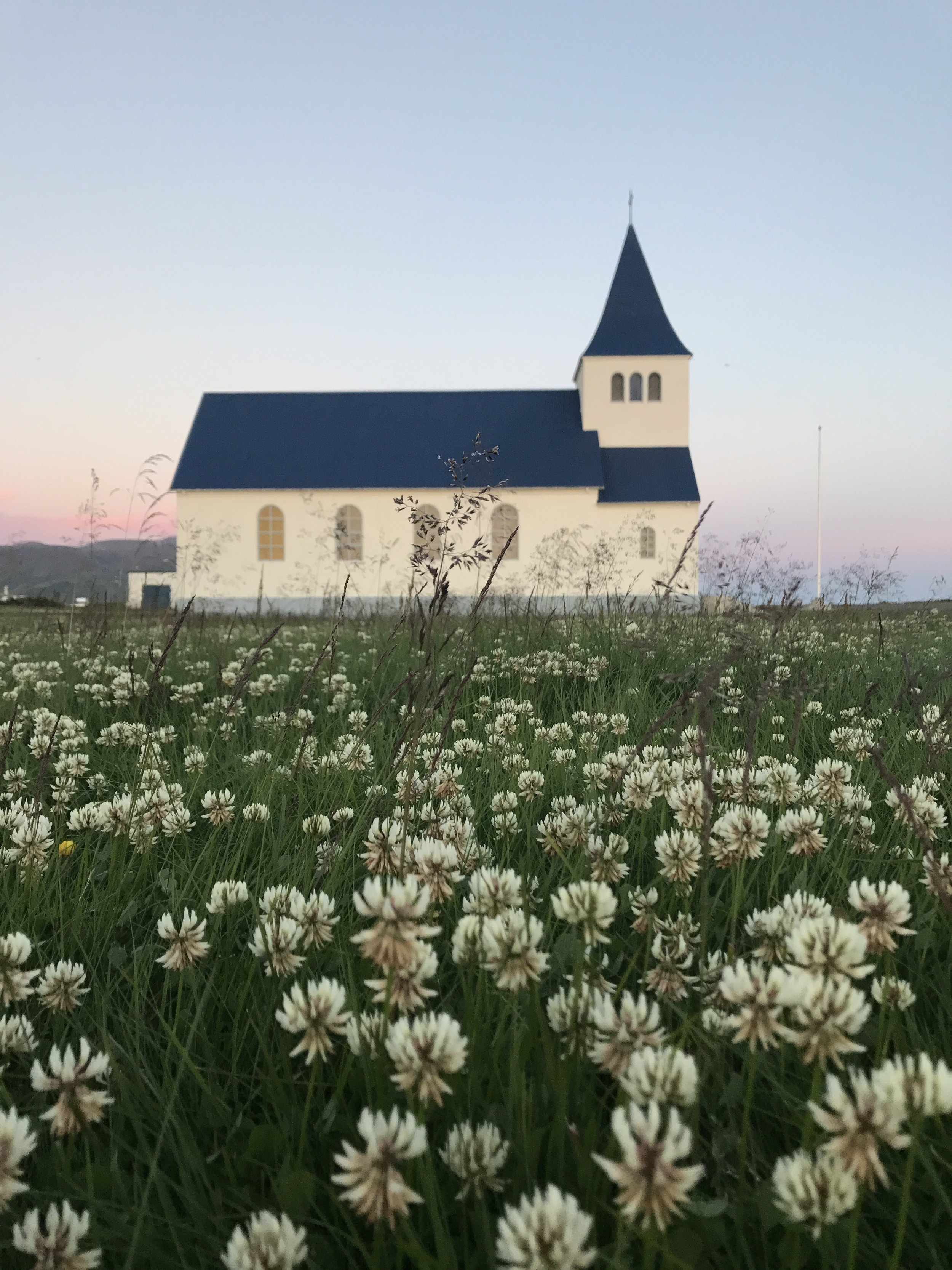 A view of a little Icelandic church through the clover