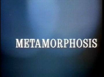 I never metamorph I didn't like.