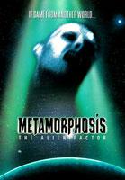 Metamorphosis -_-