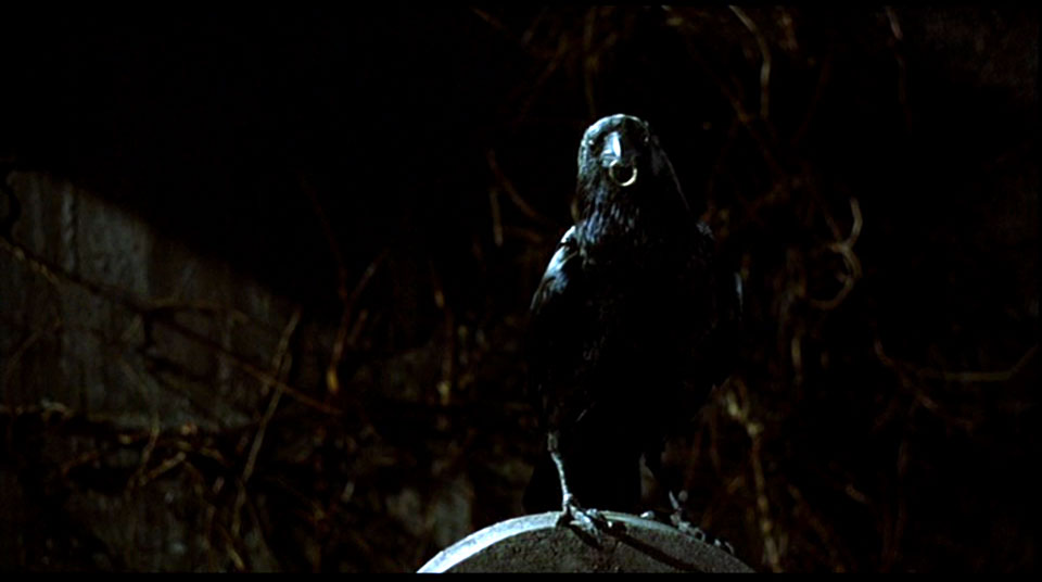 Quoth the raven, will you marry me?