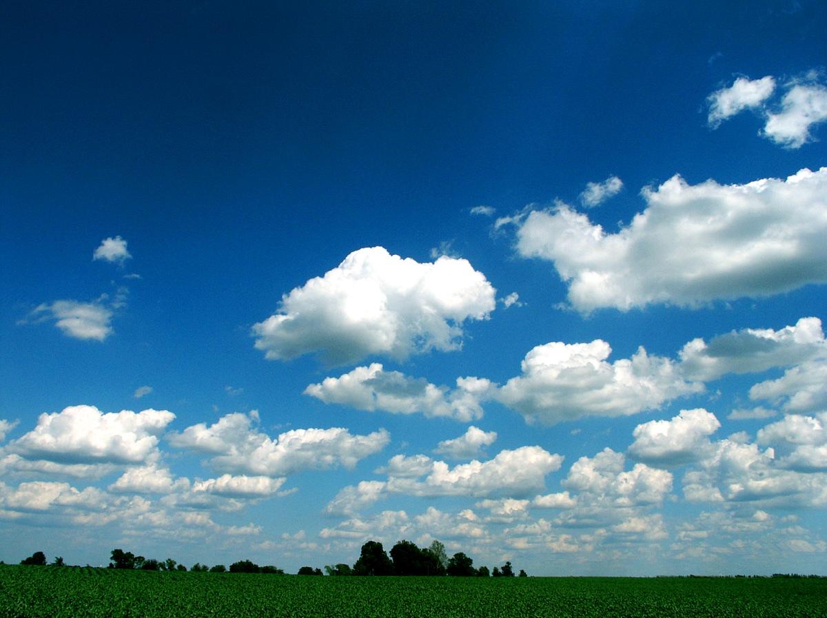 Cloud Field, June 2003