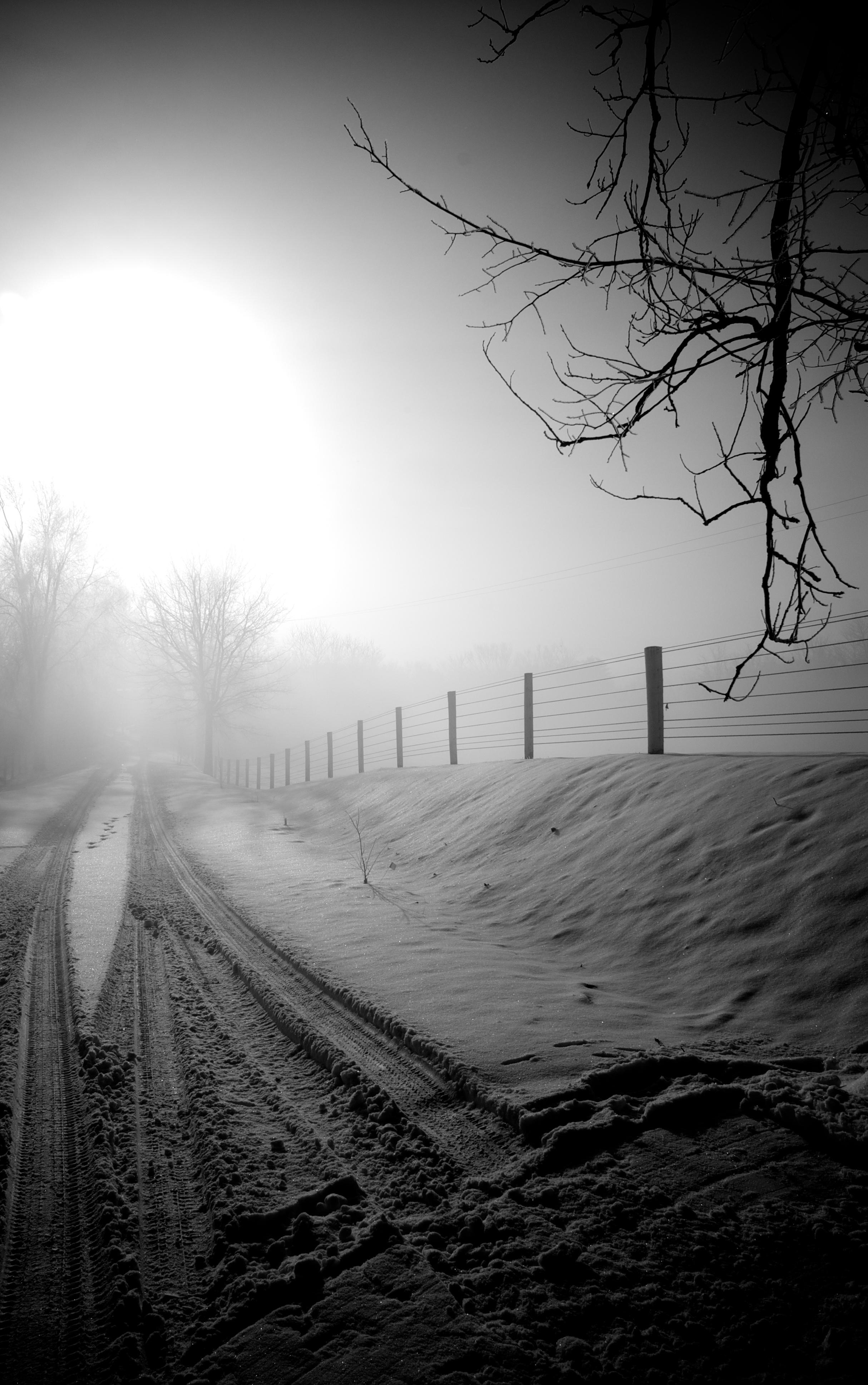 Black & White Lane, February 2008