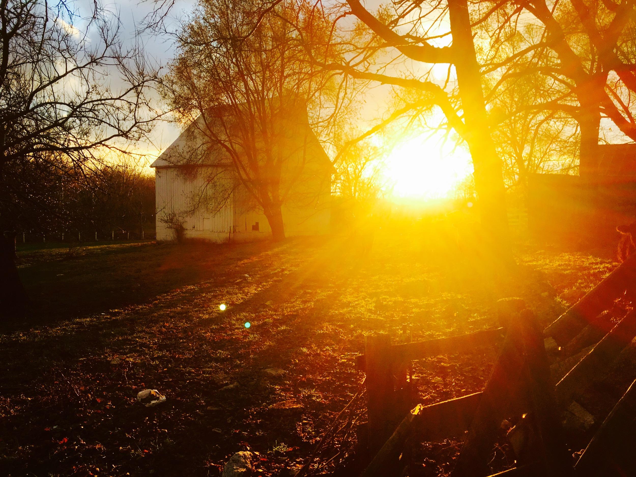 Cow Barn Sunset, November 2015