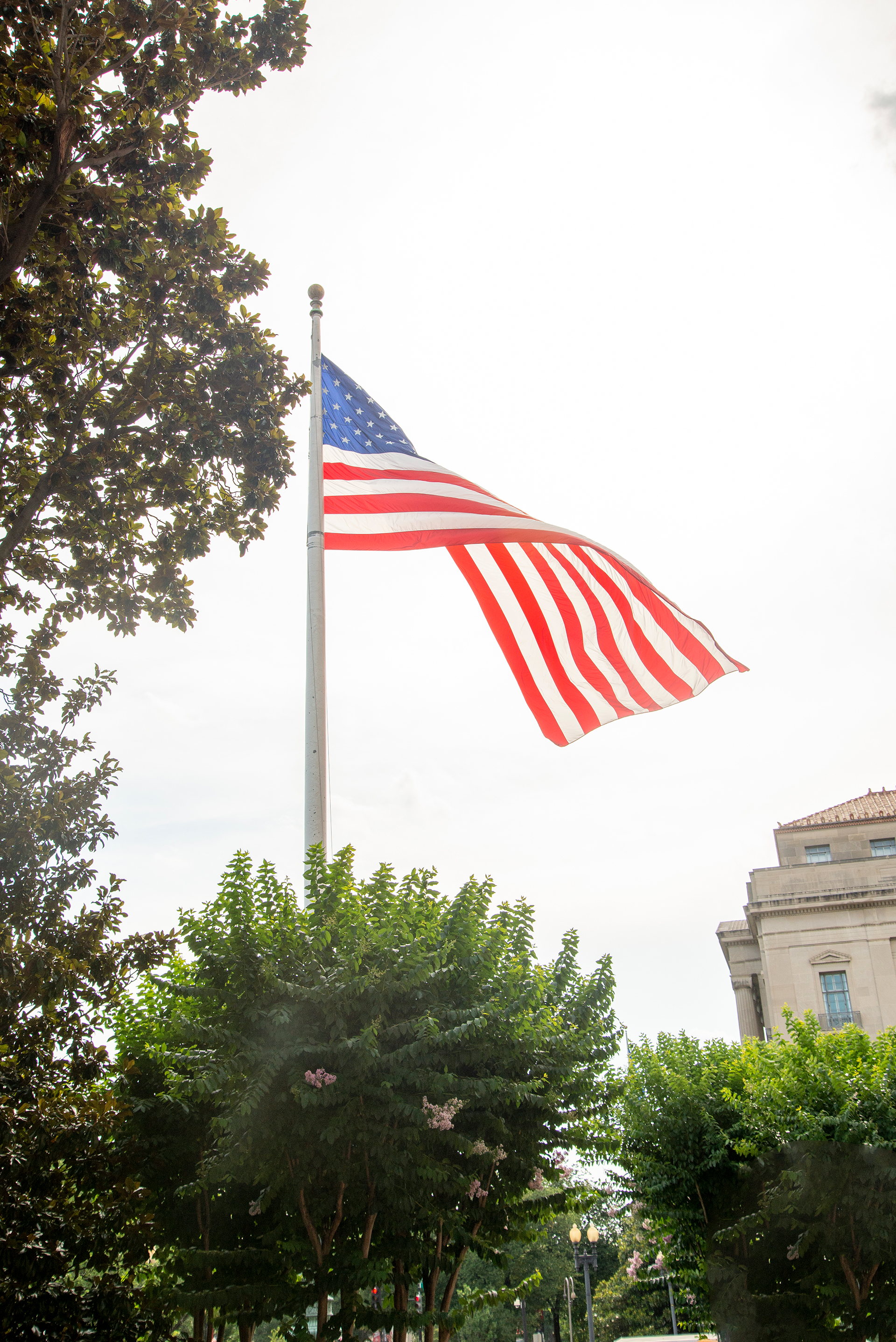 Guide to Washington D.C. on the 4th of July