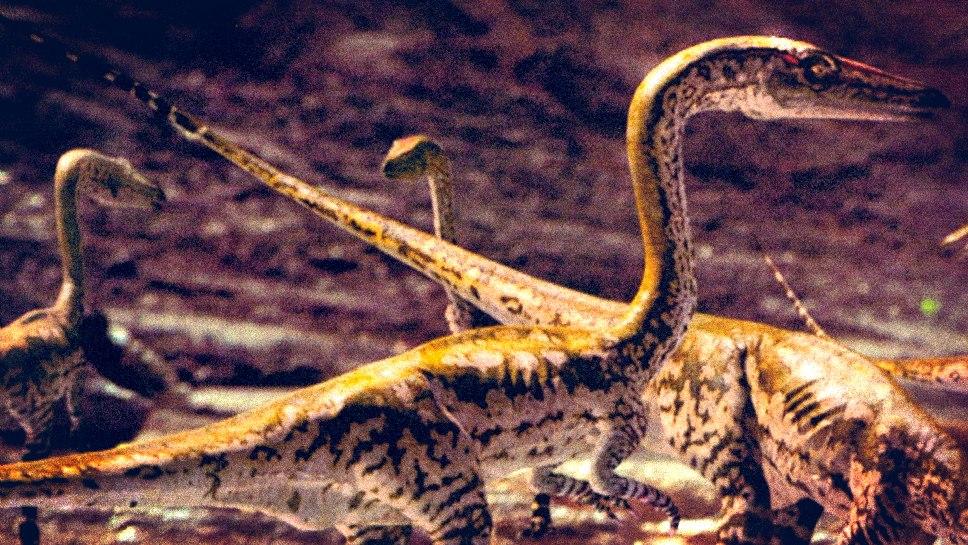 Fotografia pochodzi z książki towarzyszącej serialowi: Tim Haines  Wędrówki z dinozaurami , MUZA SA, Warszawa 2000, © BBC Worldwide, 1999
