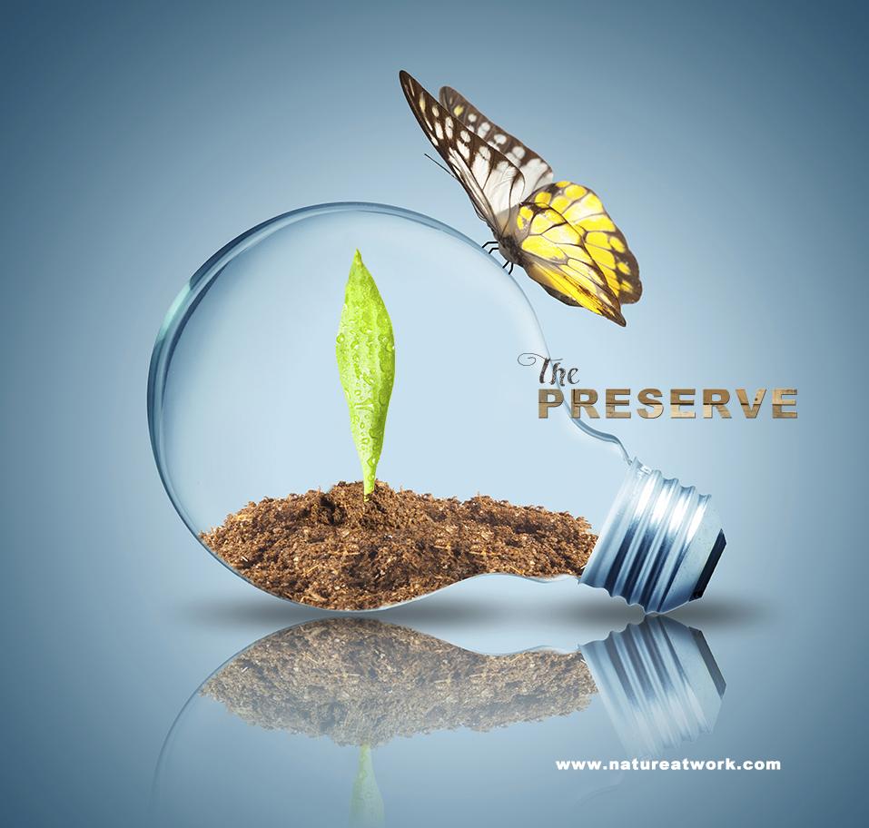 Thepreserve1-1.jpg