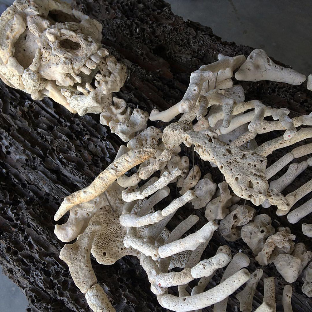 Gregory Halili.  Skeletons made of found coral.