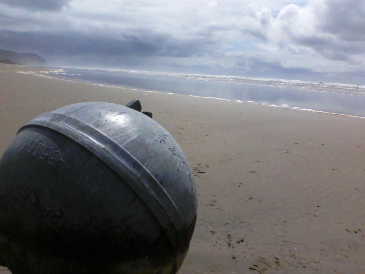 Treasure Hunting on Tillicum Beach
