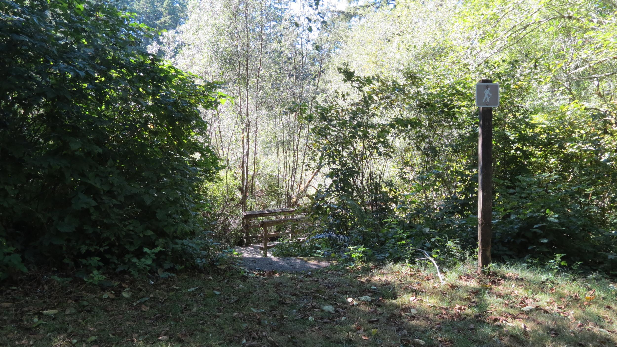 Alder Lake Hiking Trail