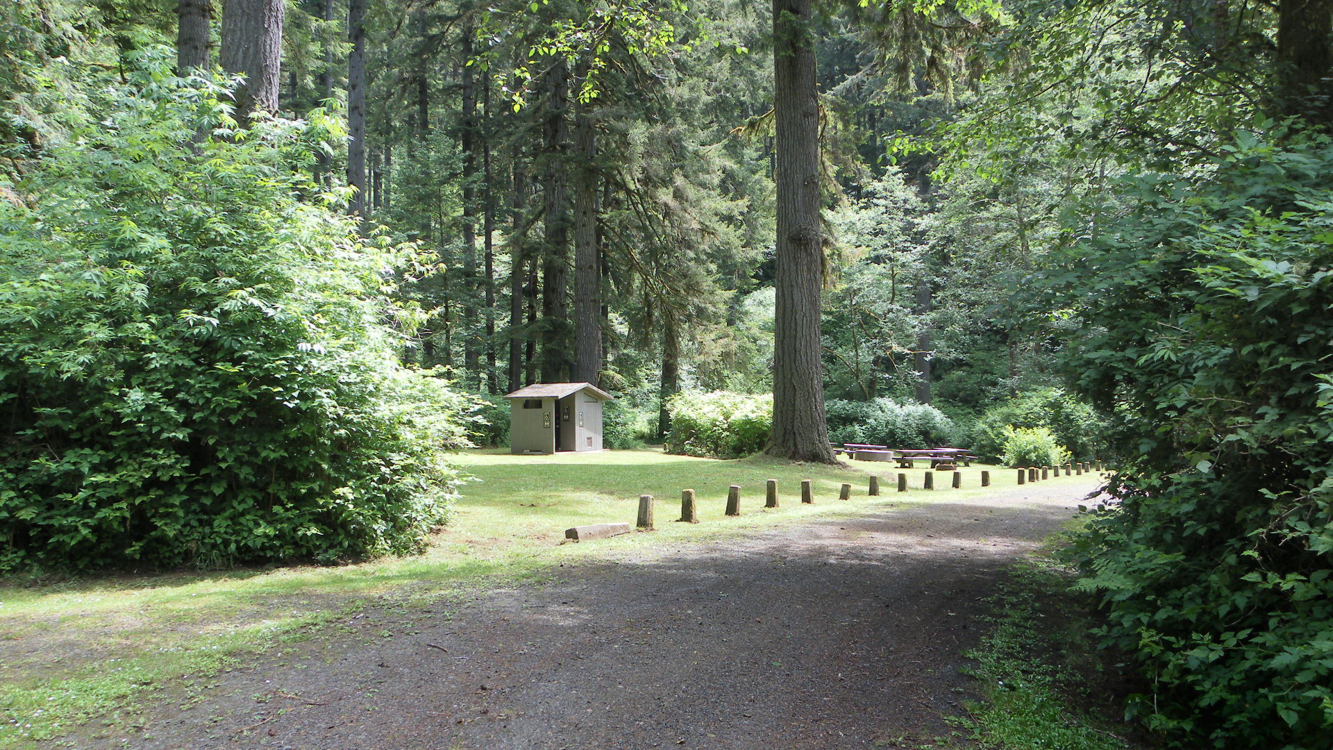 Entrance Road to Alsea Group Site