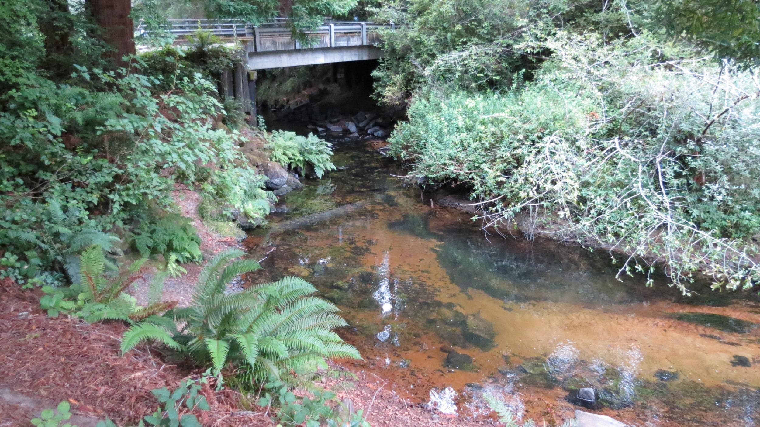 Sutton Creek
