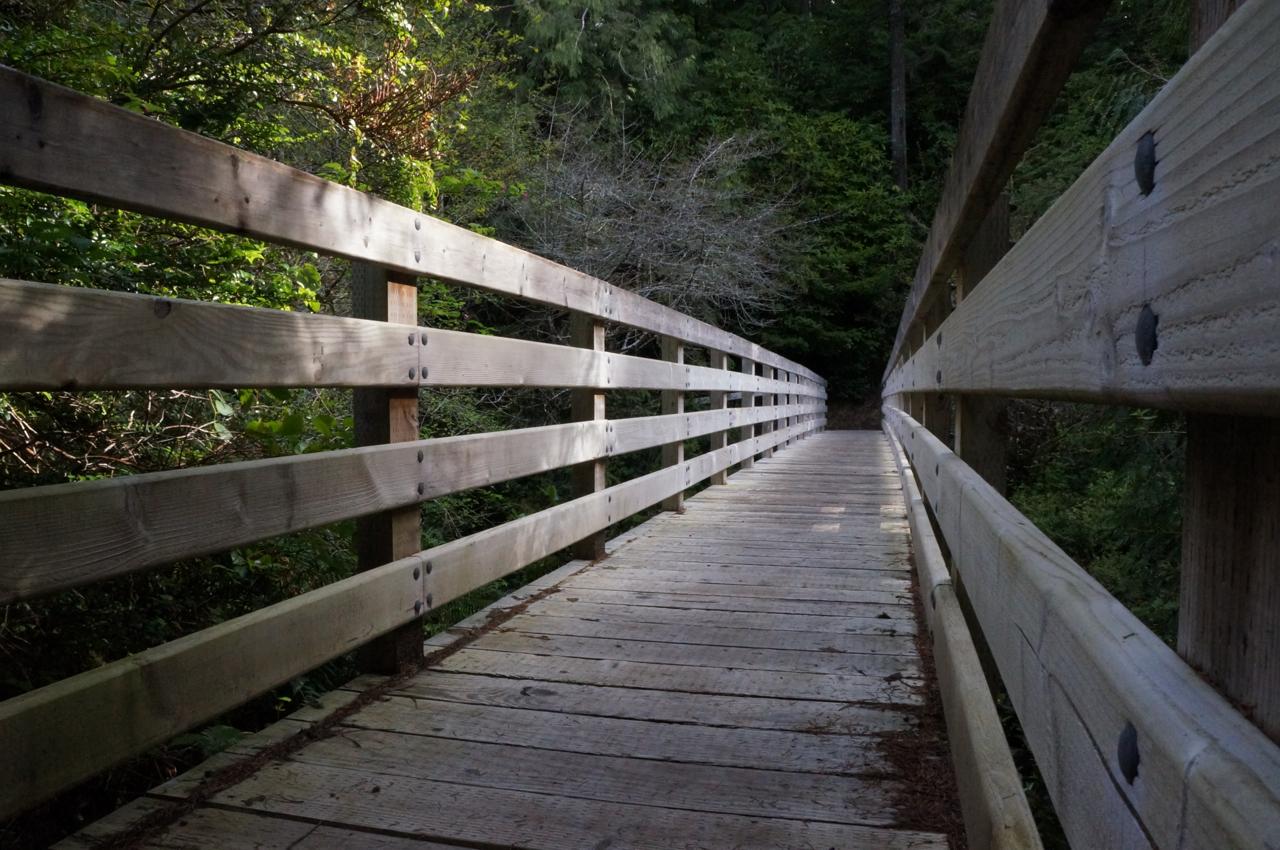 Sutton Campground trail bridge