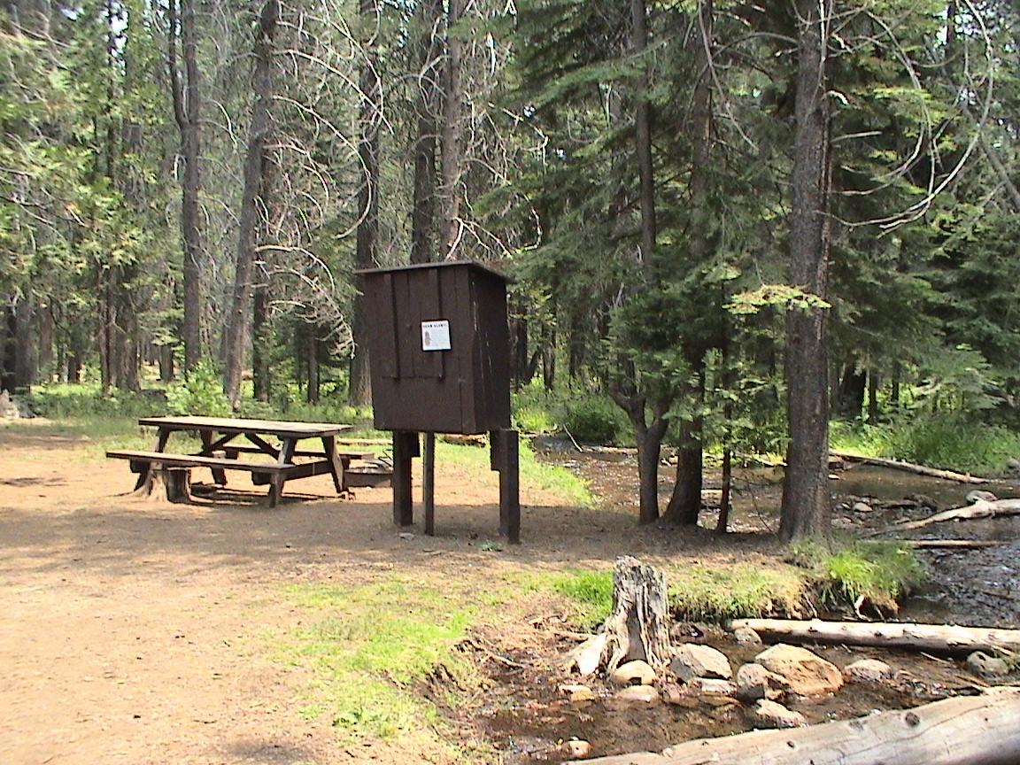 Some campsites on creek