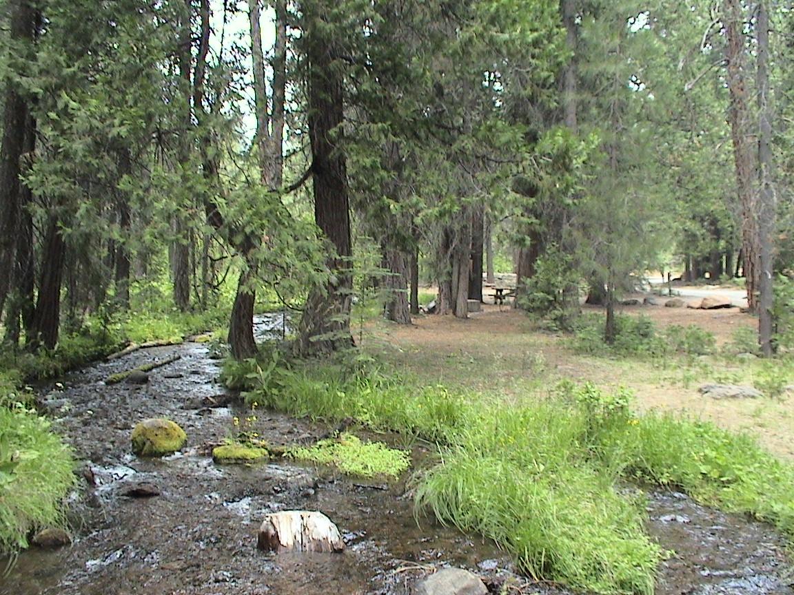 Creek through Last Chance Campground