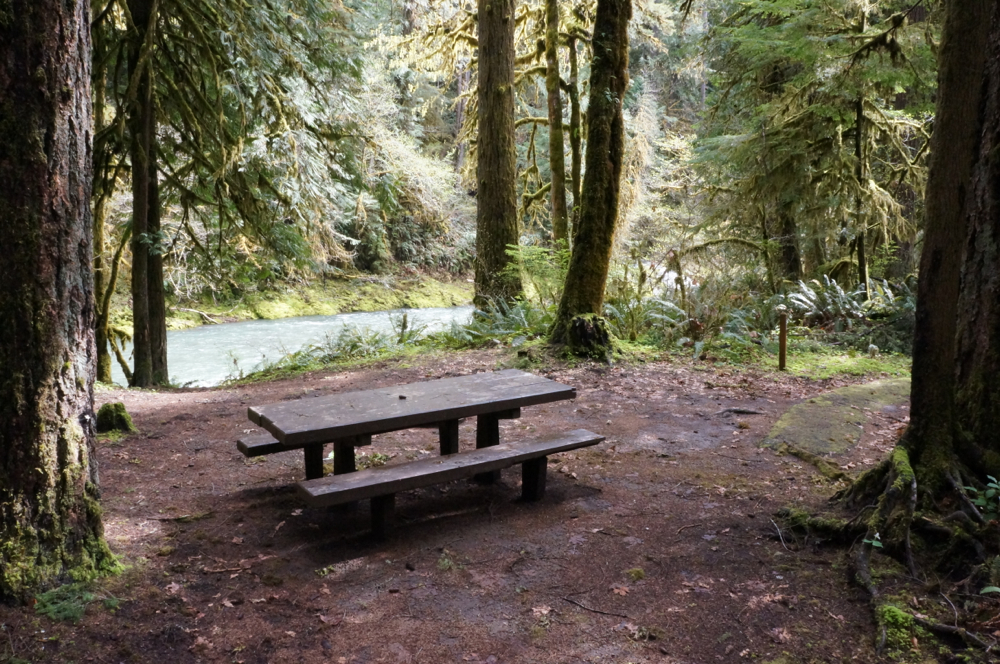 Creekfront camping