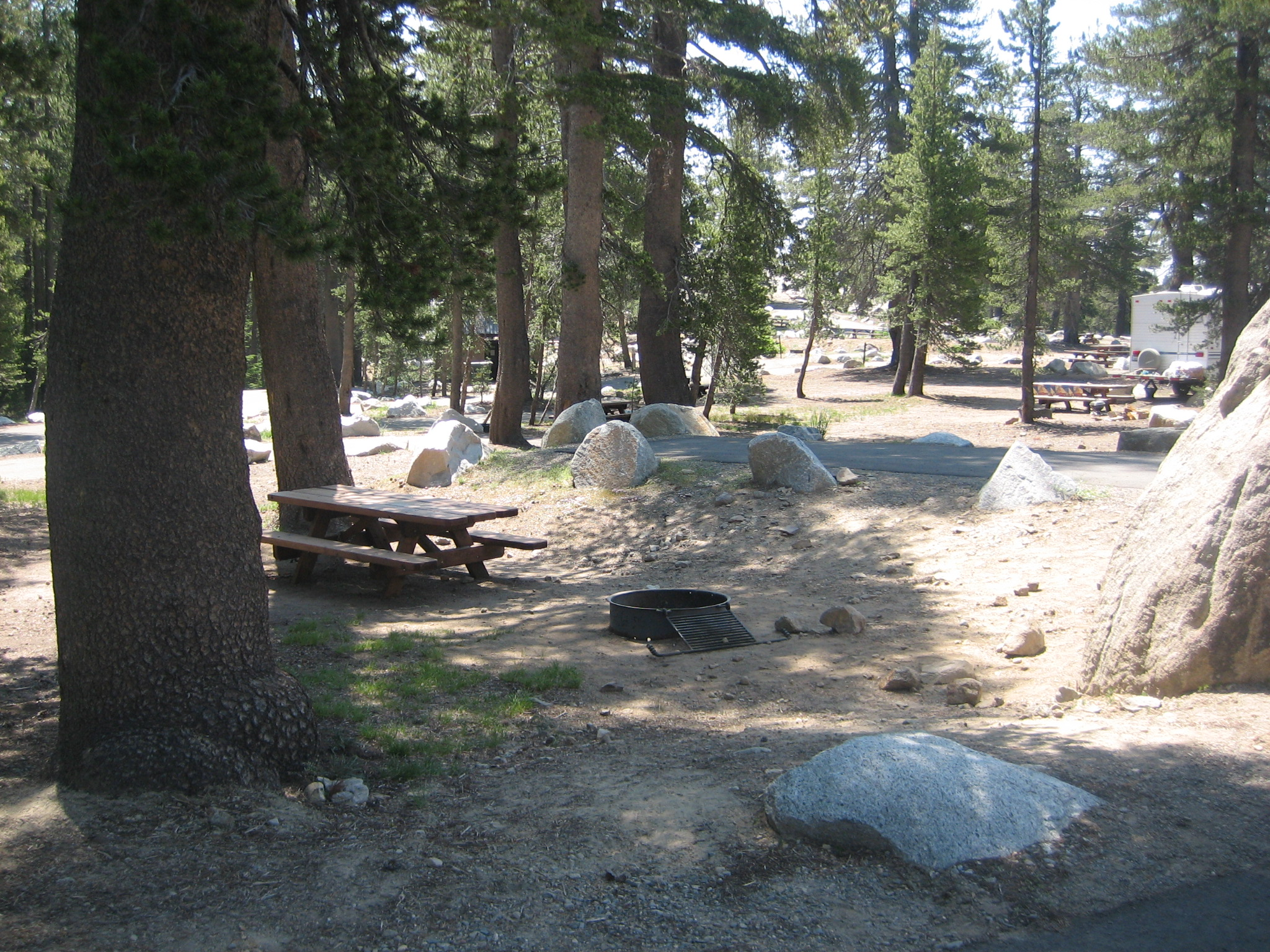 Roomy campsites