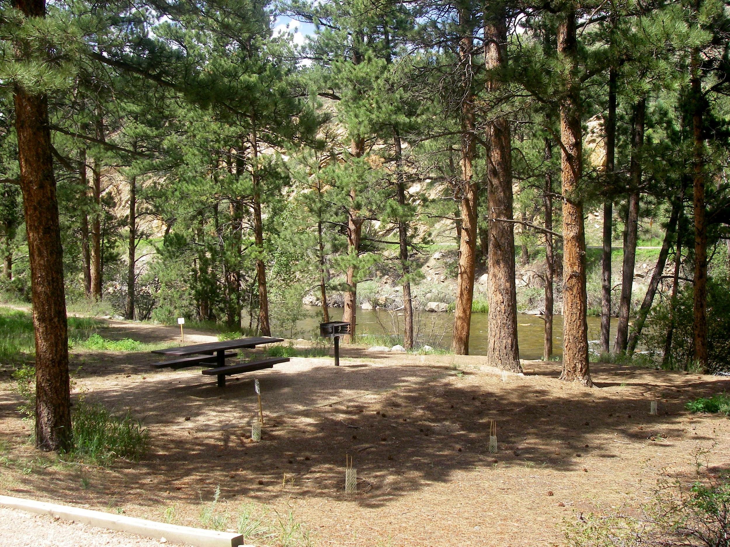 Campsites on the Cache La Poudre River