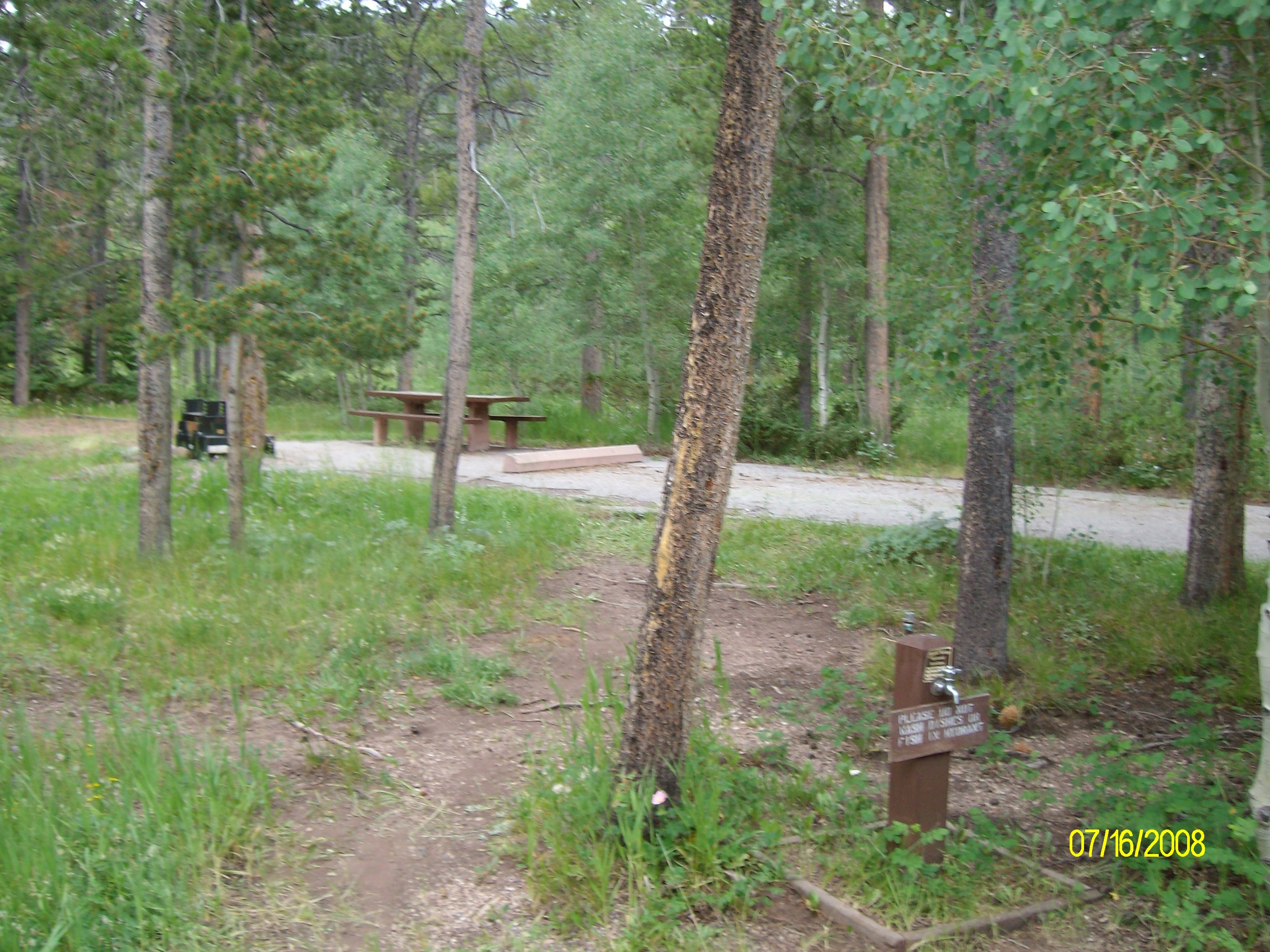 Lodgepole Campground near Flaming Gorge