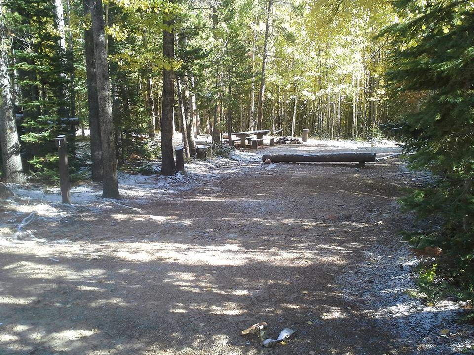 Campsite #1 in North Fork Poudre Campground