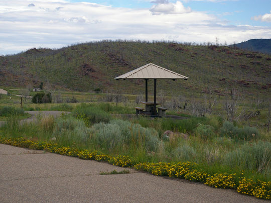 Paved campsites for easy access