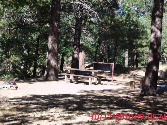 Bear country camping