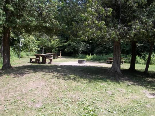 Picnic tables and fire rings