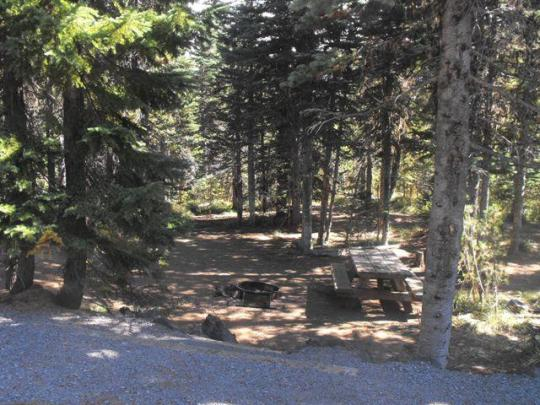 Picnic table, fire ring and parking pad