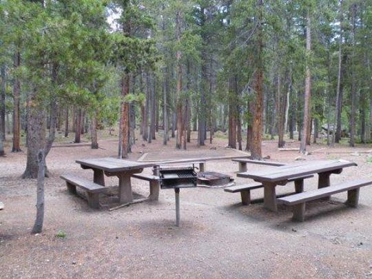 Tables, fire ring, benches, tent pads