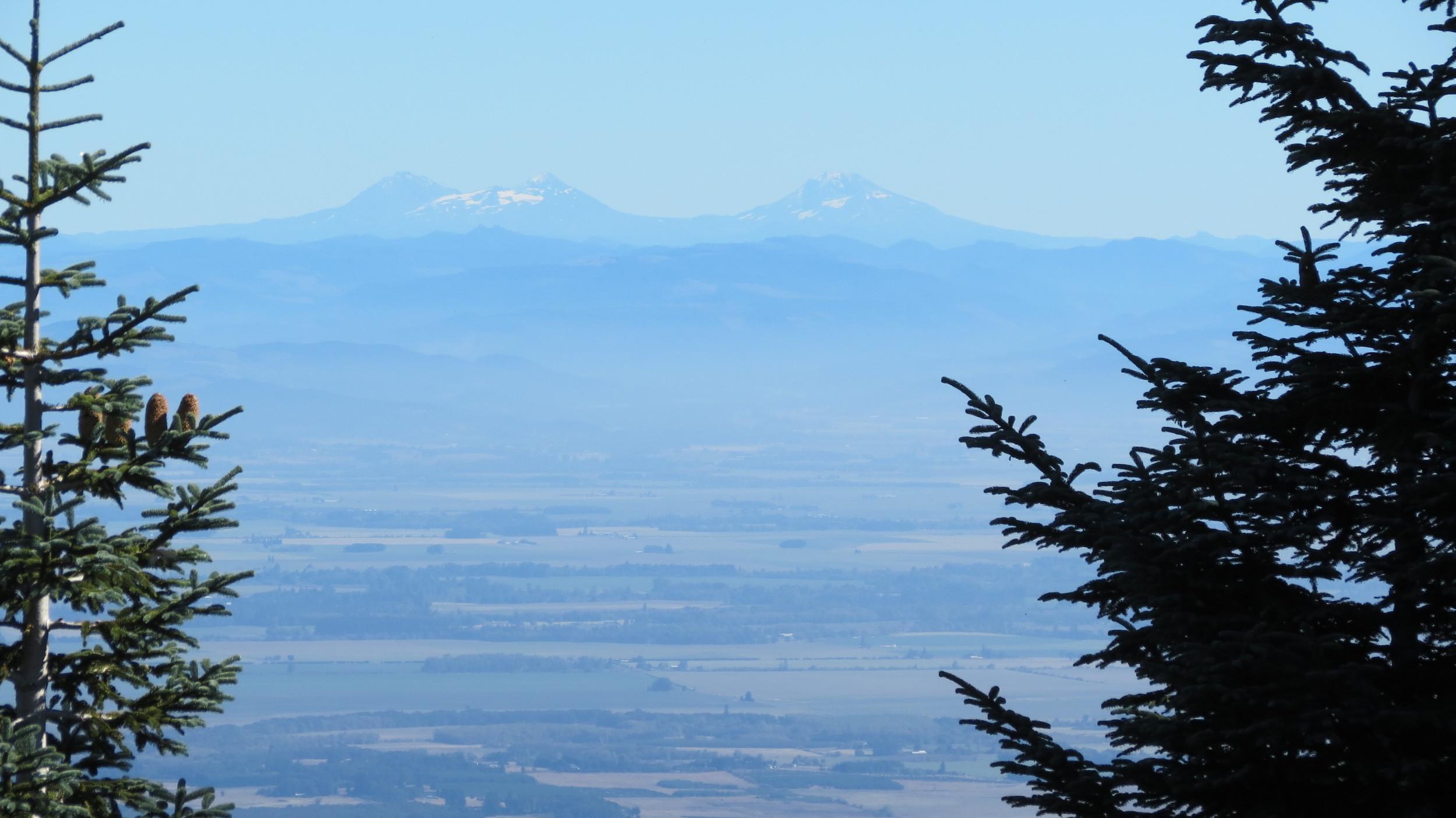 Mary's Peak, near Philomath, OR