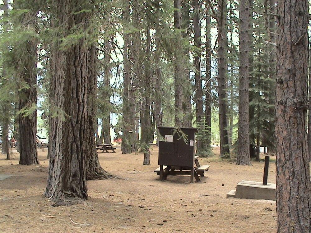 Ponderosa Campground on Butt Lake