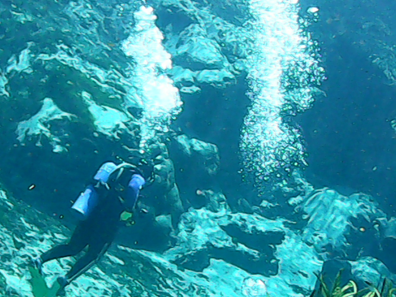 Scuba dive in Alexander Springs