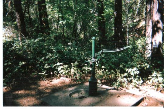 Drinking water from hand pump