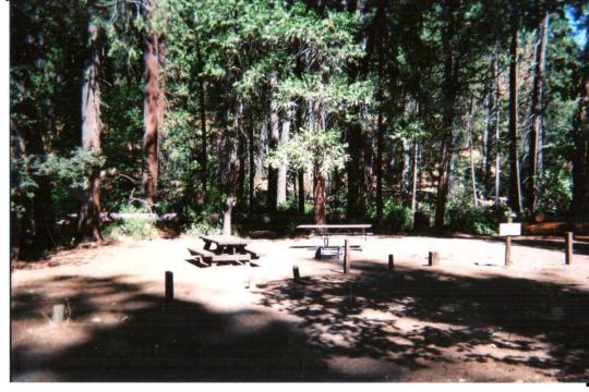 Tent friendly sites