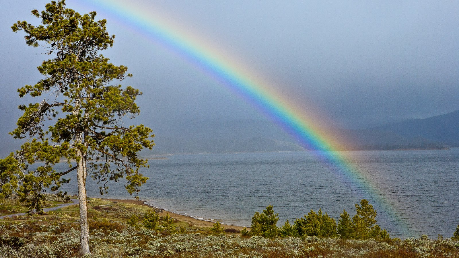 Rainbows are common