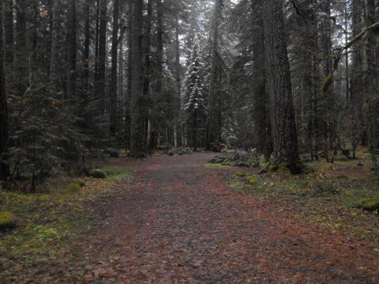 Quiet, remote camping