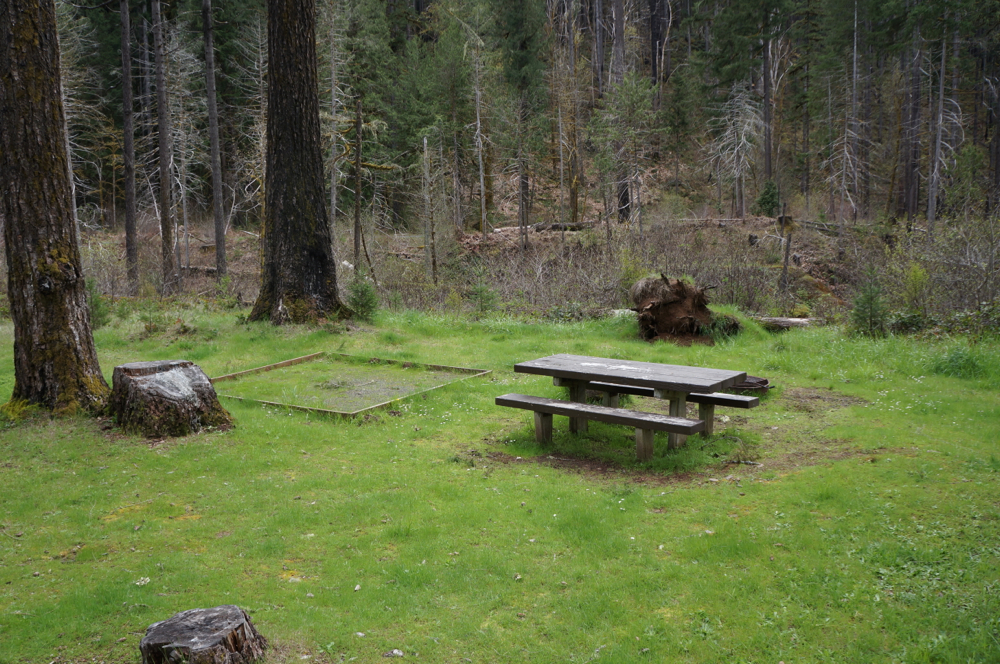 Campsites have picnic table, fire ring and tent site