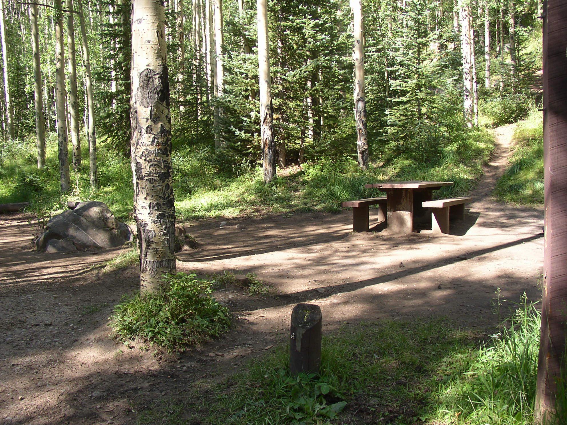 Shady mountain camping