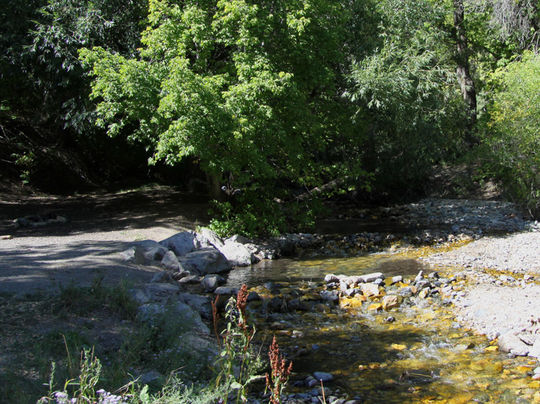 BoyScoutUT-creek.jpg