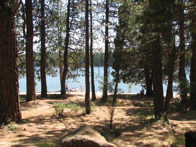 Swimming in Lake Britton