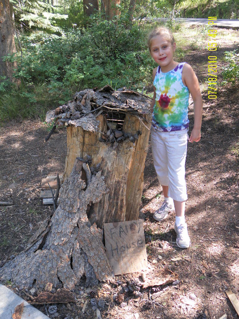 The forest is full of creative materials for children