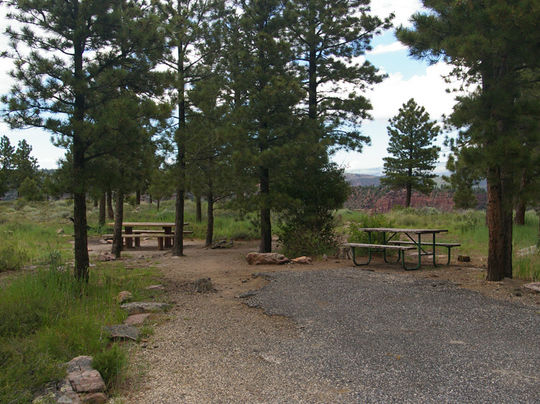 Picnic tables and fire rings provided