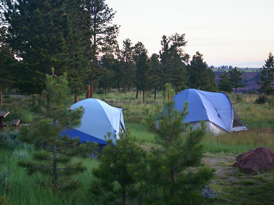 Tent friendly camping